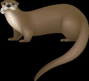 Sea Otter clipart giant #1