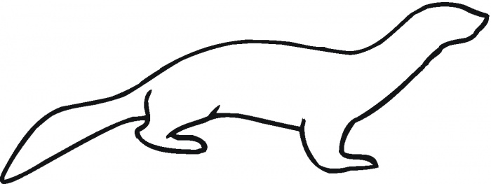 Sea Otter clipart river otter #9