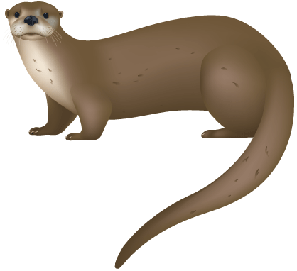 Sea Otter clipart land #3