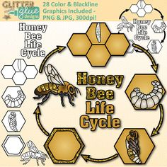 Outdoor clipart life science Know what Bee mealworm Art