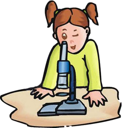 Overview clipart responsible #13