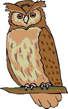 Owl clipart Art Owl Clipart Free Clipart