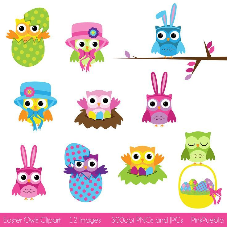 Owl clipart bunny 780 on Owls Pinterest best