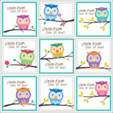 Owl clipart frame Frames owl layout image vector