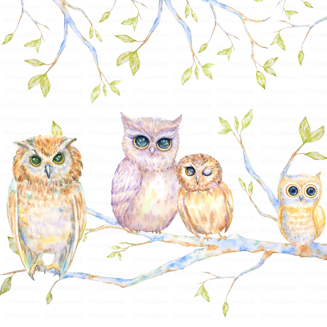 Owl clipart mom Watercolor digital is painted a