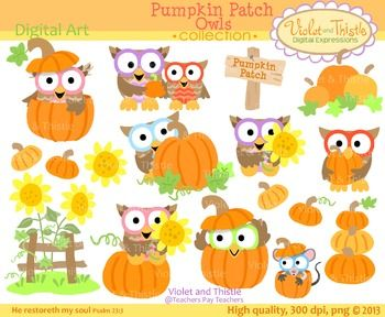 Owl clipart pumpkin ~ Clipart Clipart best Violet