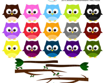 Owl clipart round Personal set commercial art flowers