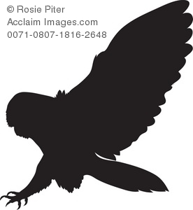 Bird Of Prey clipart angry A Stock Barn Owl Silhouette