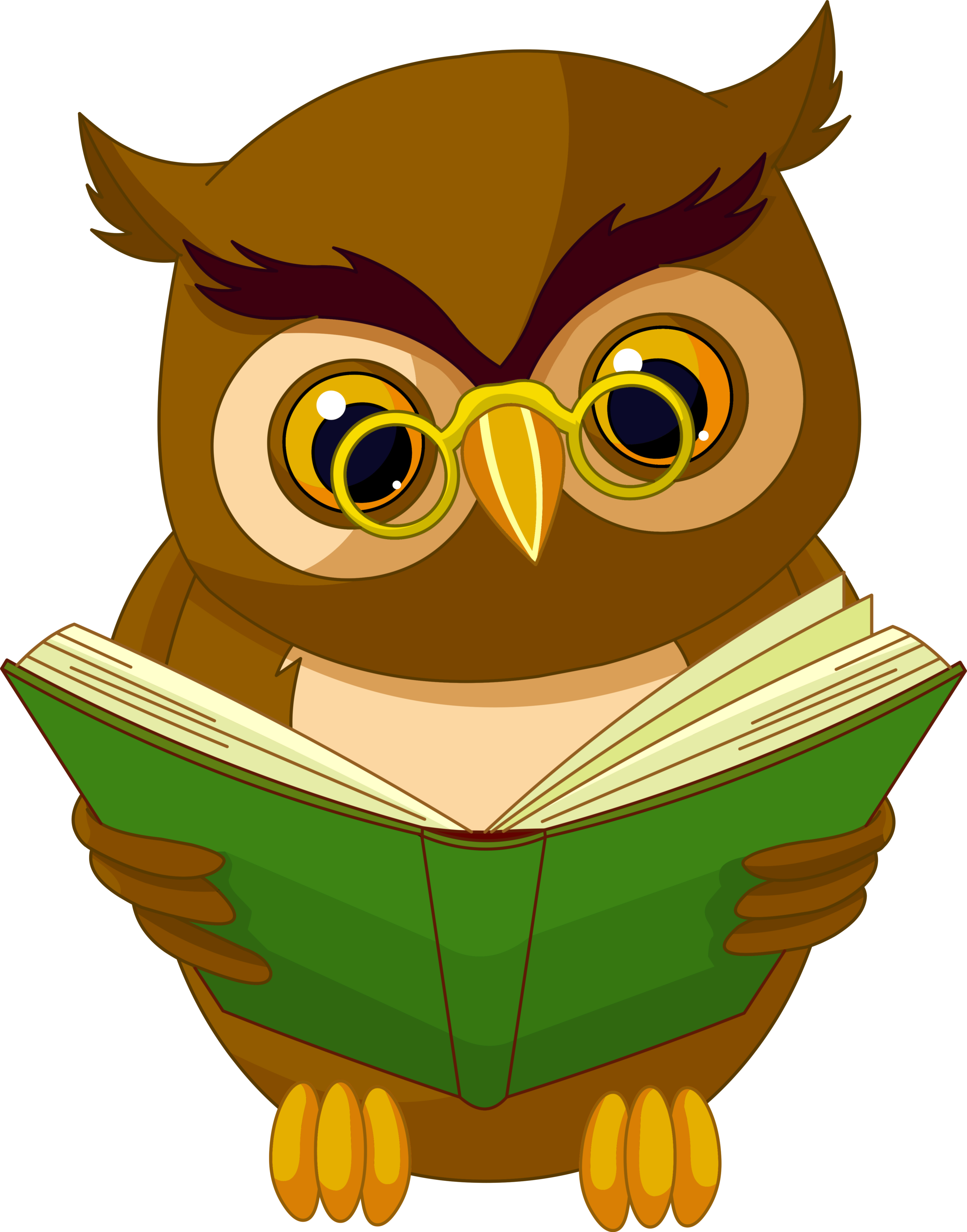Owlet clipart transparent background PNG Owl  Clipart Gallery