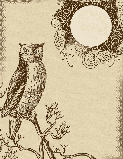 Owl clipart vintage – 08 Owl Clip 101