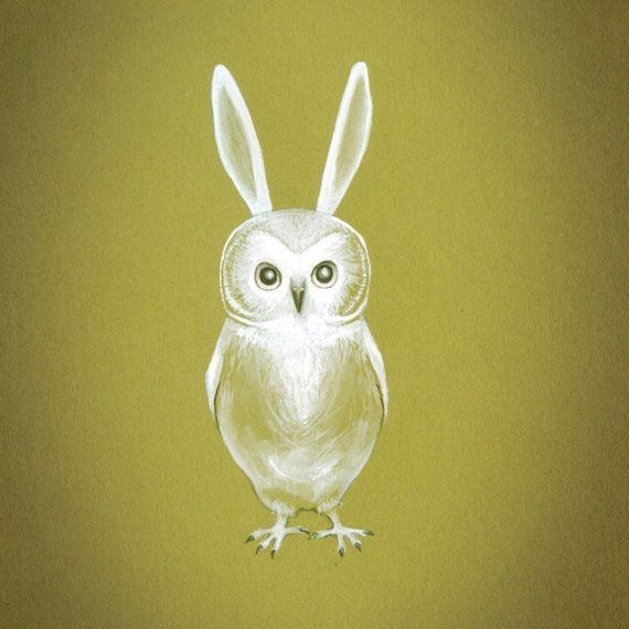 Owlet clipart bunny TIME OWL what Pinterest are