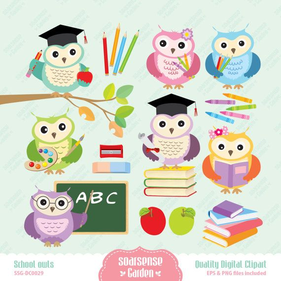 Owlet clipart education School best Owl Owls images