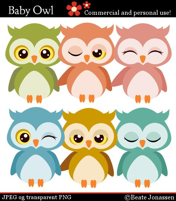 Owlet clipart mexican Owls on Pinterest Baby 176