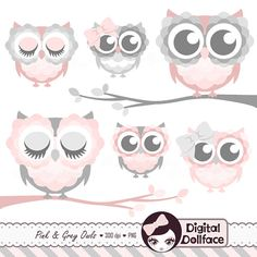 Owlet clipart pastel On Grey set Branch