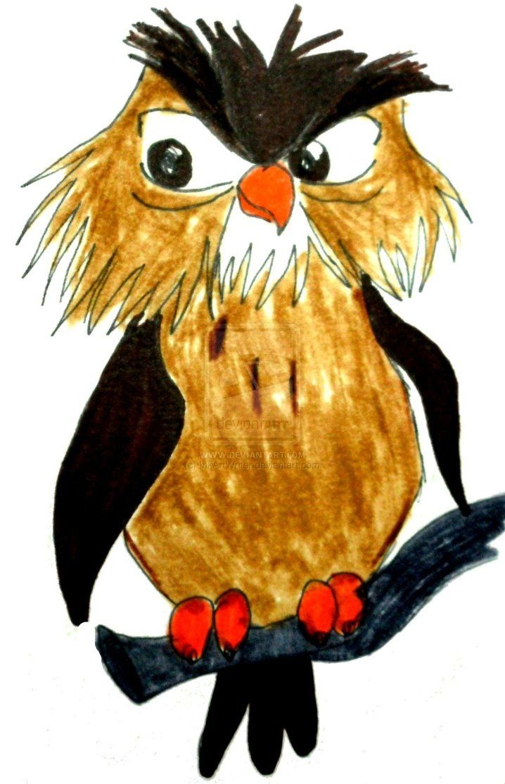 Owlet clipart pencil Images 495 and Find more
