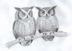 Owlet clipart pencil Whet Pencil Making Drawings No