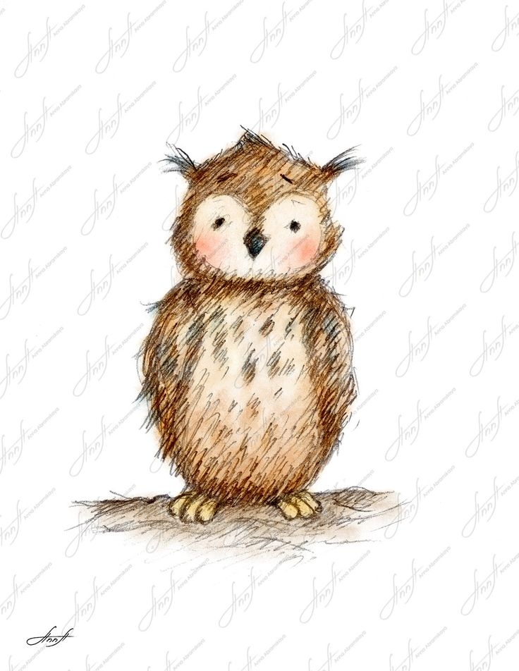 Owlet clipart pencil Wall Print Art to The