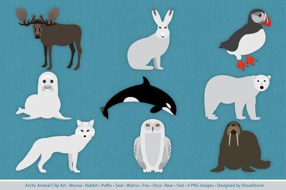 Tundra clipart arctic animal #3