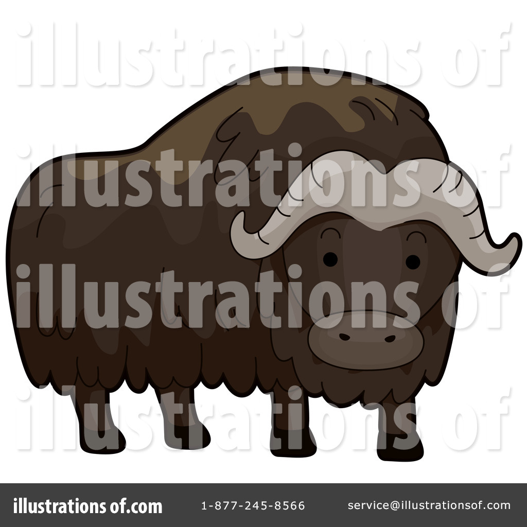 Muskox clipart outline Clipart Top 56 83 Image