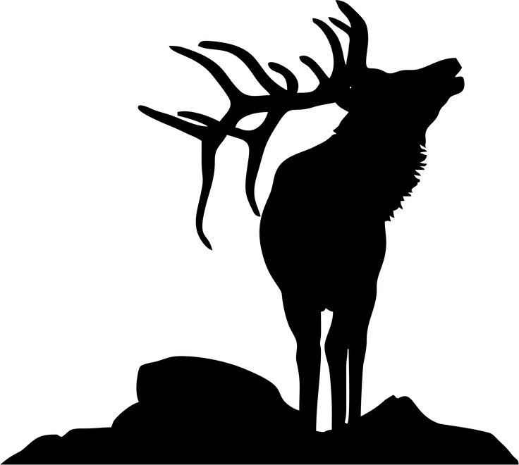 Bighorn Sheep clipart bull elk Elk elk 9 Pinterest silhouette