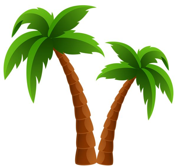 Palm Tree clipart 25+ Two Trees clip Palm