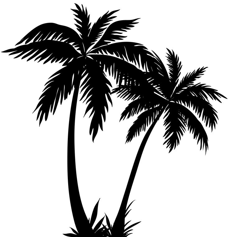 Palm Tree clipart On Download about ClipartAndScrap Ideas