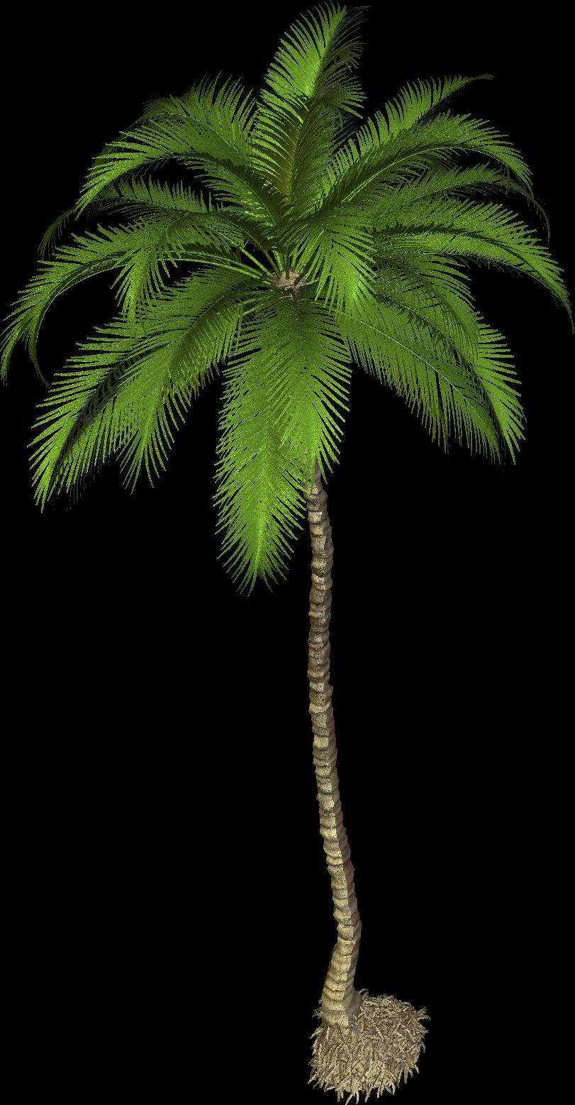 Palm Tree clipart caribbean food Food  Food Latinarepas Venezuelan