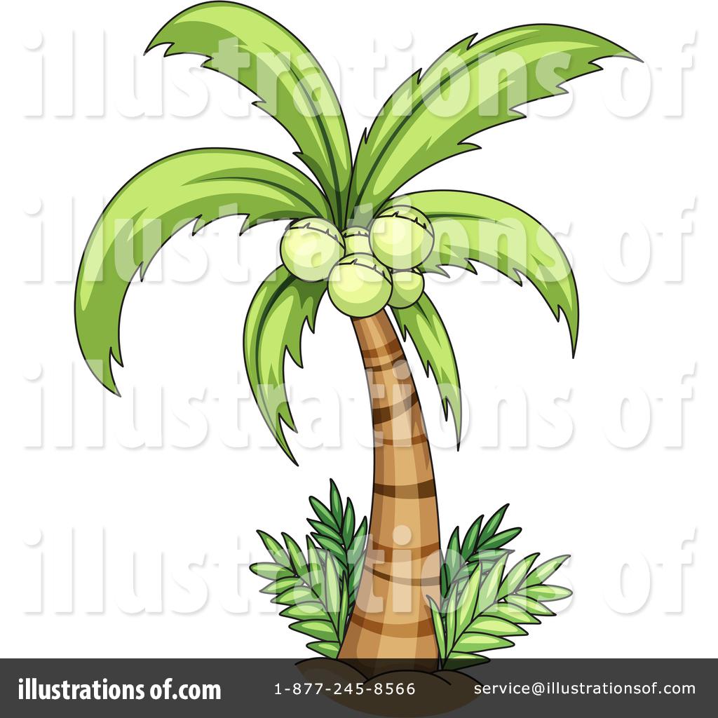 Palm Tree clipart coconut tree Palm Illustration #1344329 Tree Sample