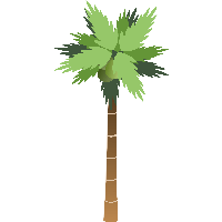 Palm Tree clipart face Images clipart photo FreePNGImg PNG