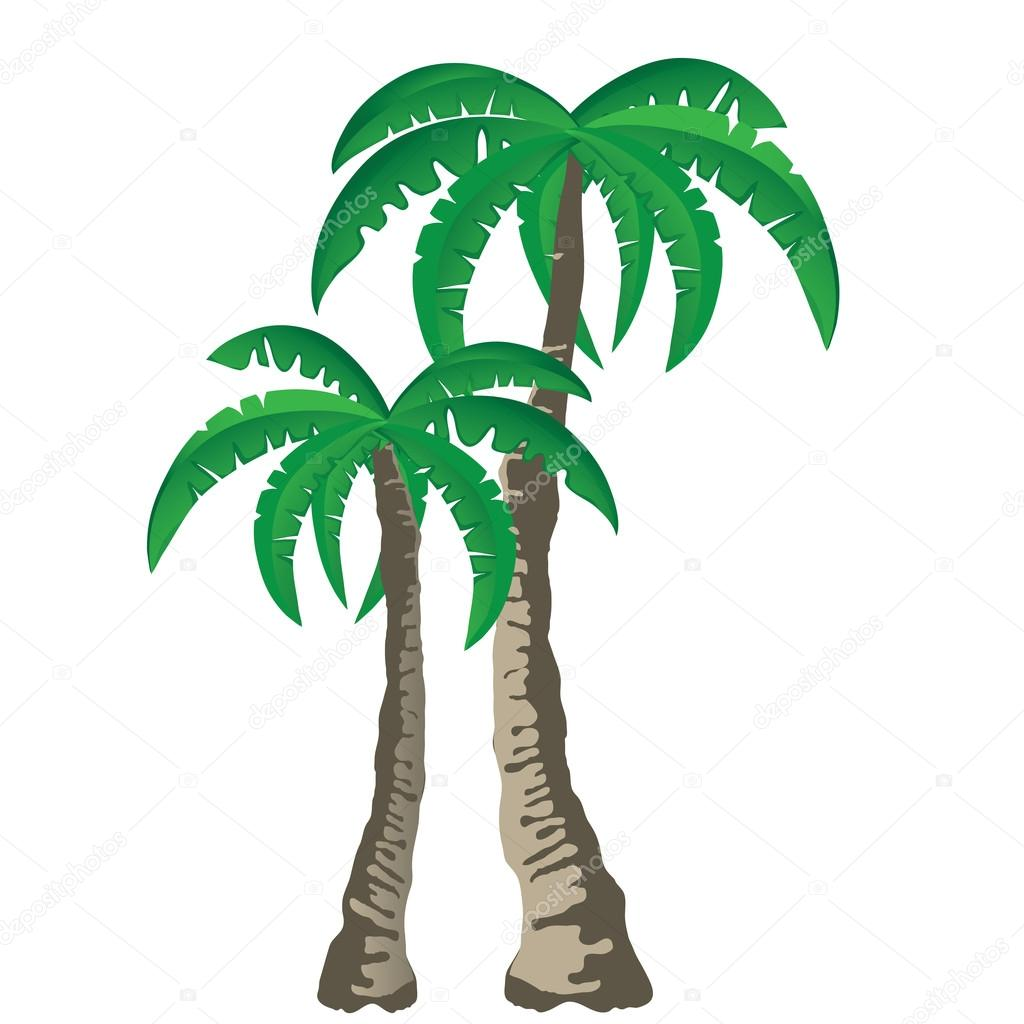 Palm Tree clipart isolated On Stock isolated trees trees