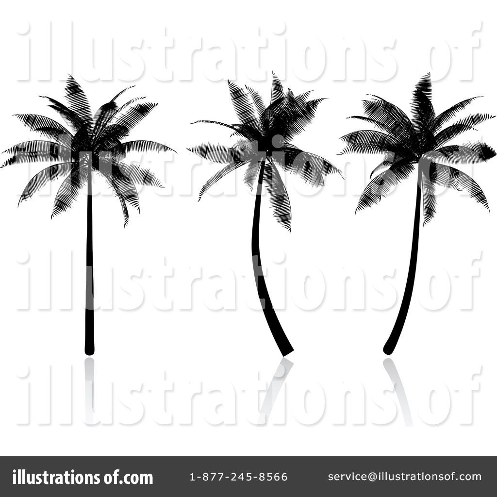 Palm Tree clipart palma Tree (RF) by Palm Illustration