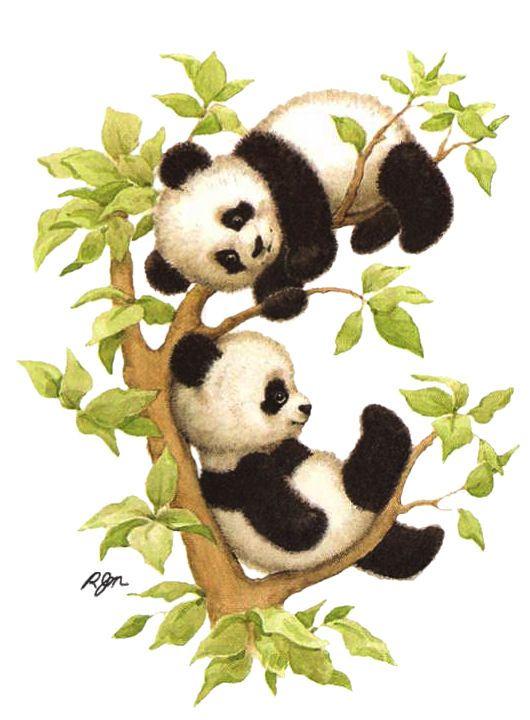 Panda clipart mama Panda best Bear Find on