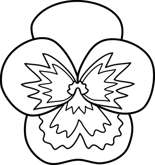 Pansy clipart  Flower Pansy clipart Pansy