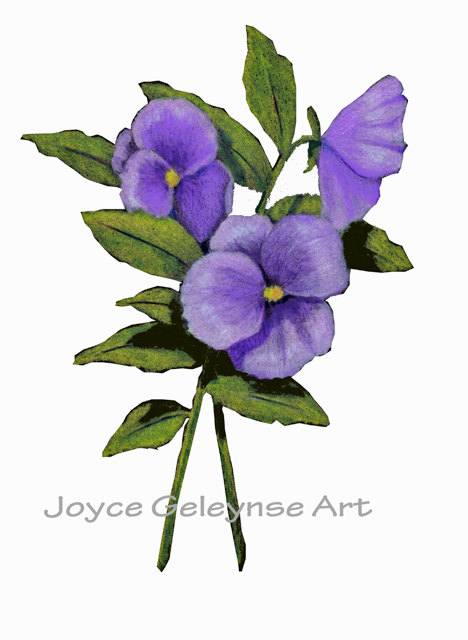 Pansy clipart Clip Freehand Clip Freehand Flowers