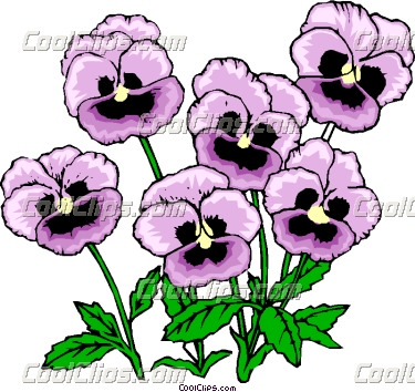 Pansy clipart Clip Pansy Art Download –