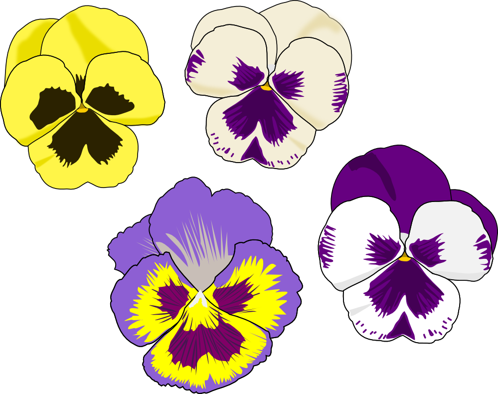 Pansy clipart butterfly vintage Flower Download Pansy Pansy Clipart