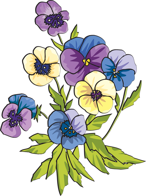 Pansy clipart Clip Pansy Clipart flower Collection