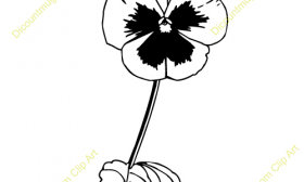 Pansy clipart Images Pansy Free Clipart Clipart