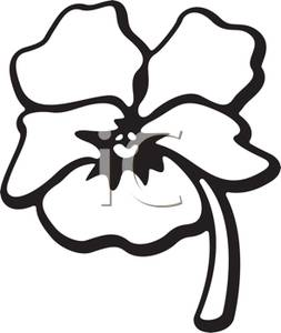Shell clipart pansy #6