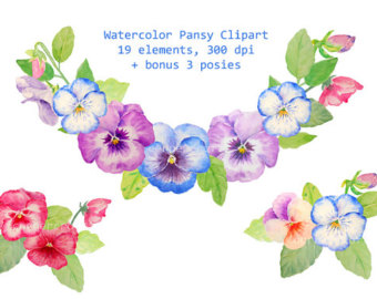 Pansy clipart blue #6