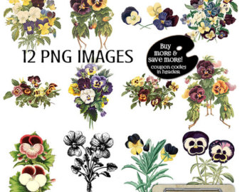 Pansy clipart botanical Digital clipart Pansies Digital Pansy