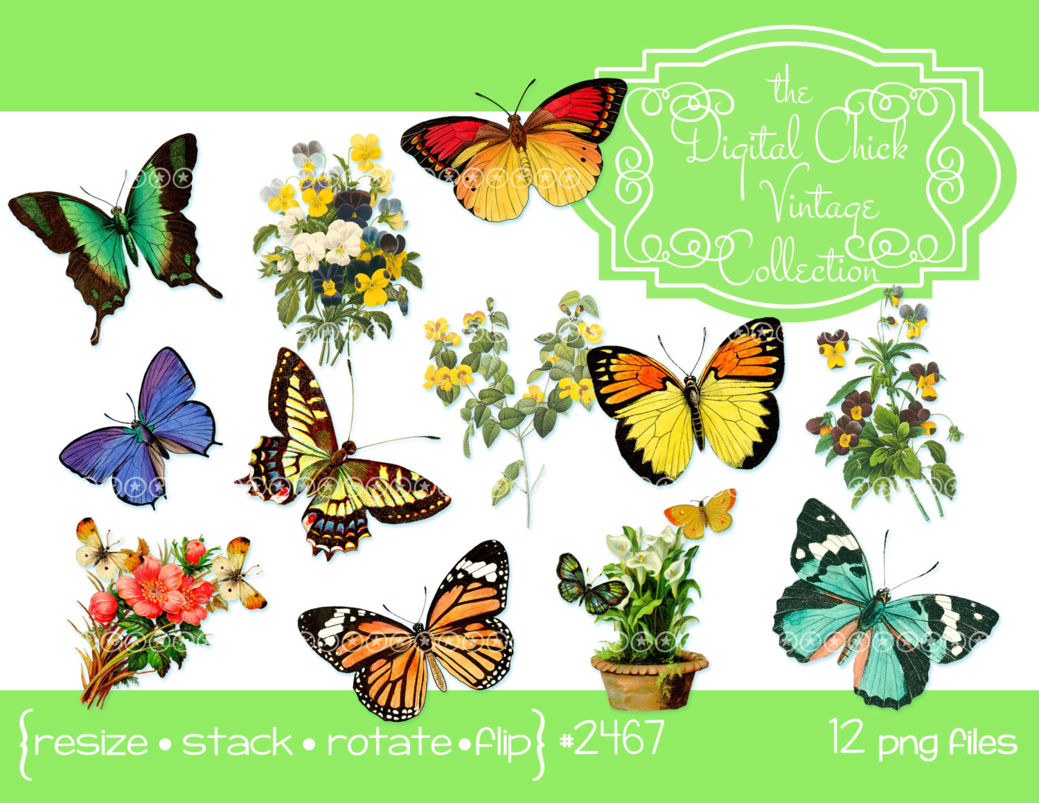 Pansy clipart butterfly vintage A  This file Butterfly