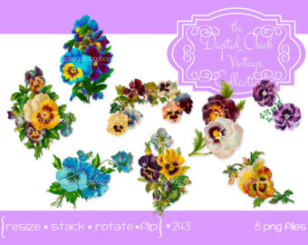 Pansy clipart butterfly vintage  instant Digital instant download