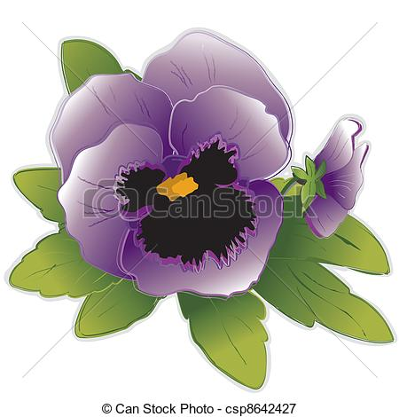 Pansy clipart cartoon Csp8642427 Lavender Lavender Pansy Flowers