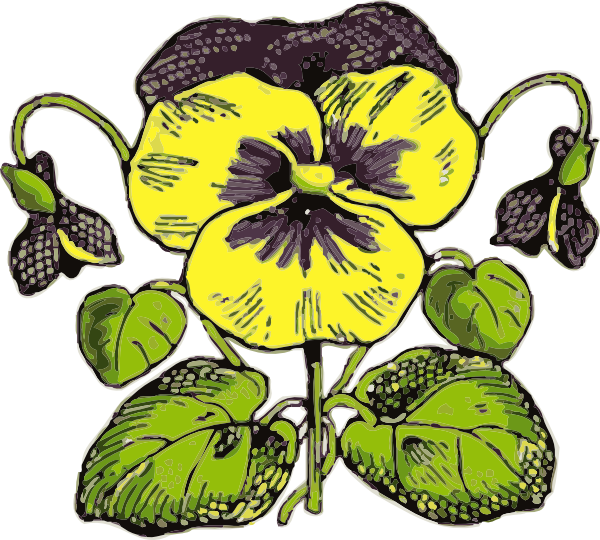 Pansy clipart cartoon As: Download at this image