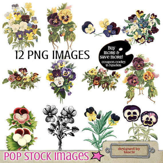 Pansy clipart flower garland #4