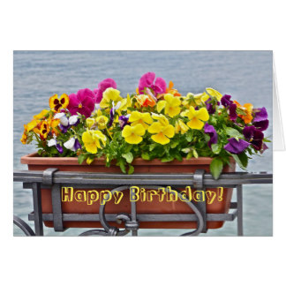 Pansy clipart happy birthday #14
