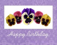 Pansy clipart happy birthday #15