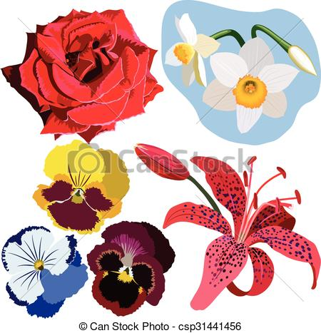 Pansy clipart red Flowers lily pink narcissus pansies
