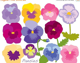 Pansy clipart shell #8